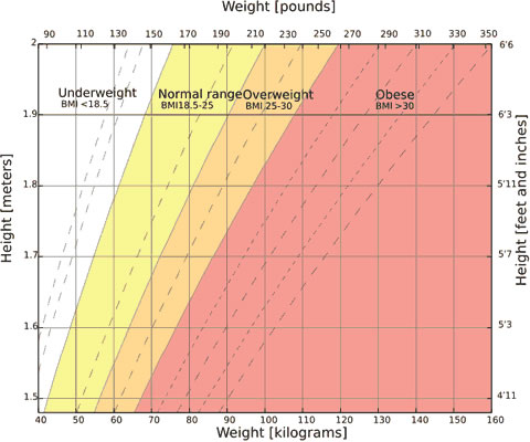 How much should I weigh for my height and age? Measure your BMI chart