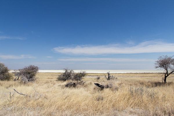 Beautiful Etosha Park Namibia | 40plusstyle.com