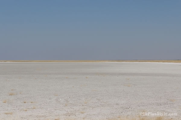 salt valley in Etosha Park Namibia, Africa | 40plusstyle.com