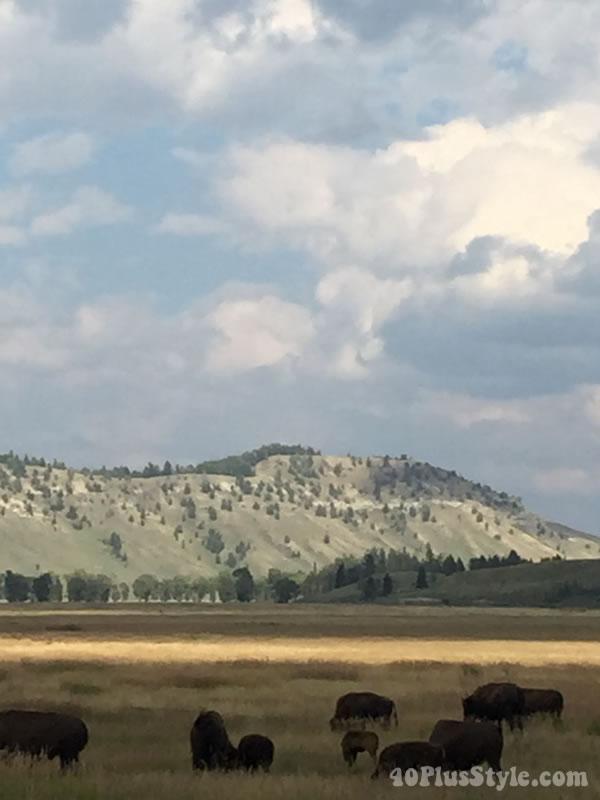 yellowstonenationalpark-11opt