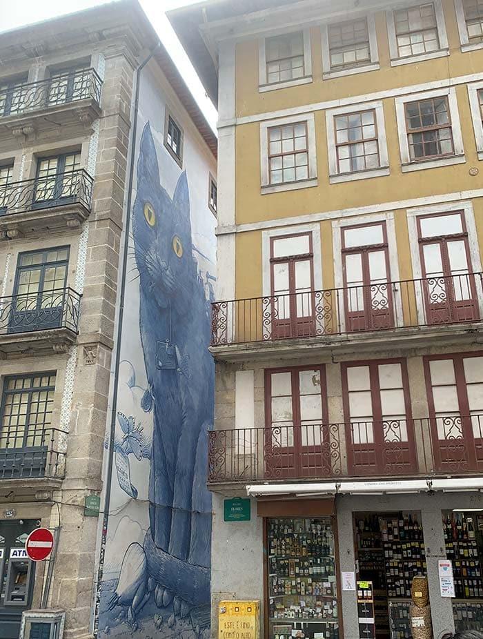 Cat mural in Porto, Portugal   40plusstyle.com