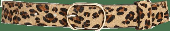 Halogen genuine calf hair belt | 40plusstyle.com